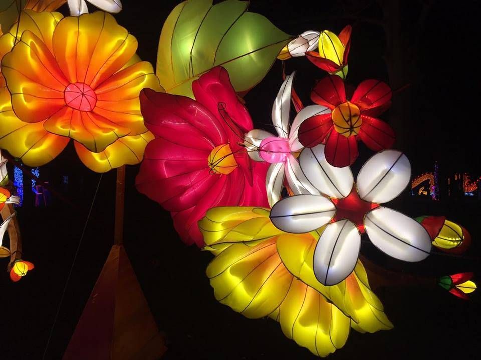 Beautiful Flowers, Magical Lantern Festival @ Chiswick House & Gardens