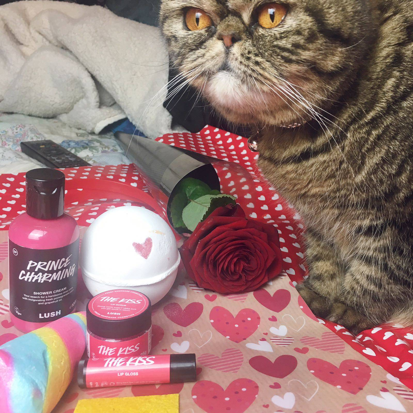 Lush Valentines Day Mini Haul