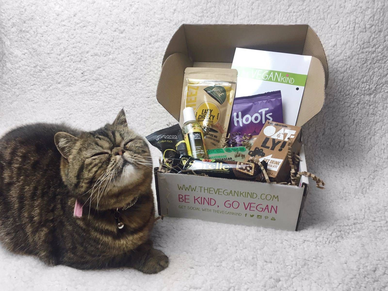 TheVeganKind Vegan Subscription Box Cat
